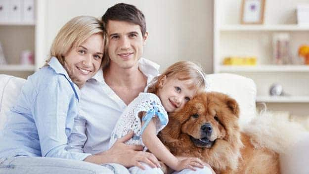 Wills & Trusts dog-young-family Direct Wills Stanford-le-Hope